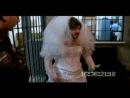 Сашка  Бородач - Невеста))))) Смешно до слёз!)))))))))